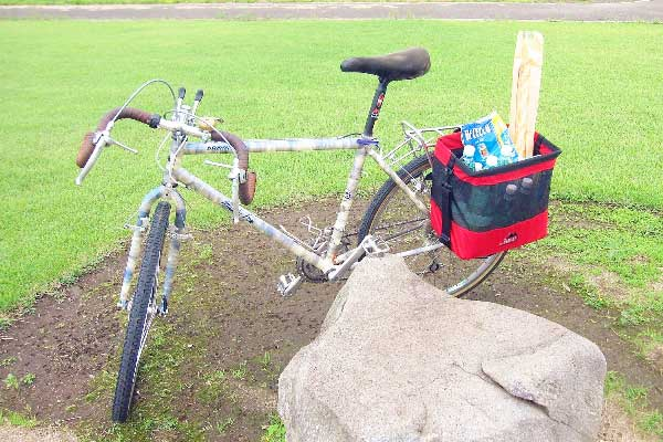 Grocery Bag Pannier